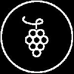 icon-cantina-vino